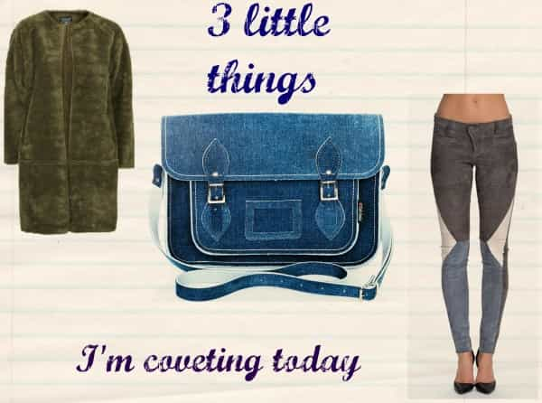 3 LITTLE THINGS I'M COVETING TODAY